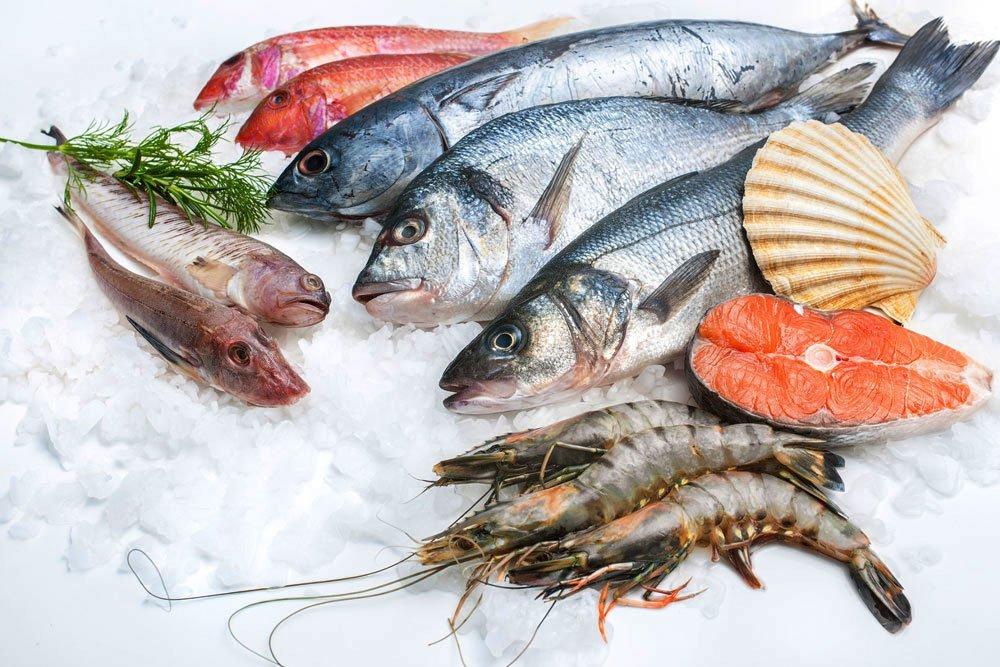 fresh fish Destin, FL