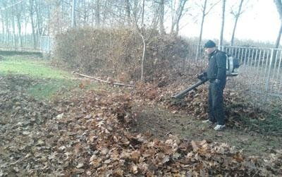 pulizia foglie torino