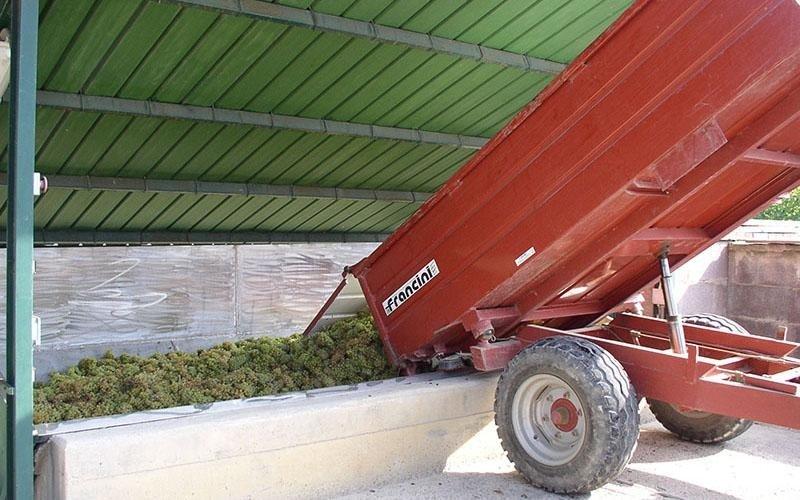 Azienda Agricola Casale di Falchini