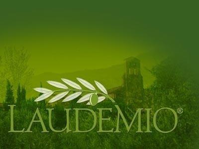 Huile d'olive Vierge Extra de Olive Laudemio