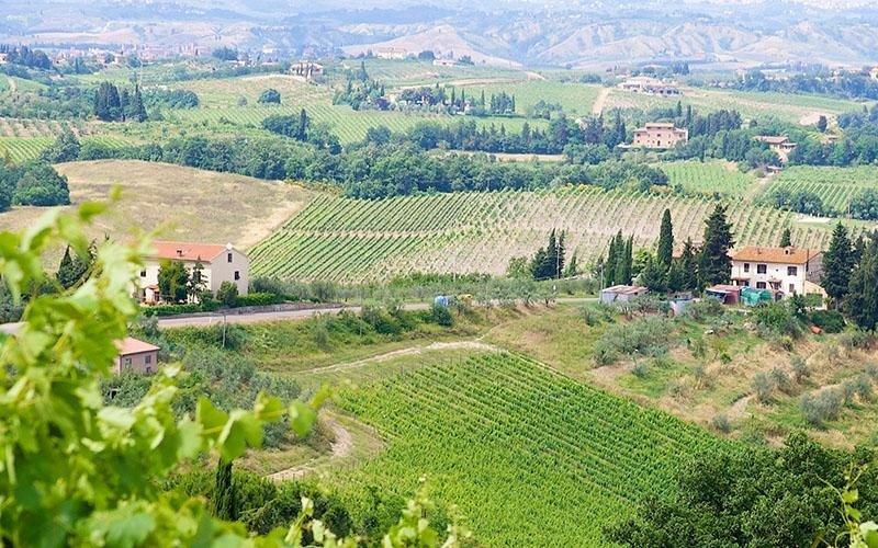 Azienda agricola a San Gimignano