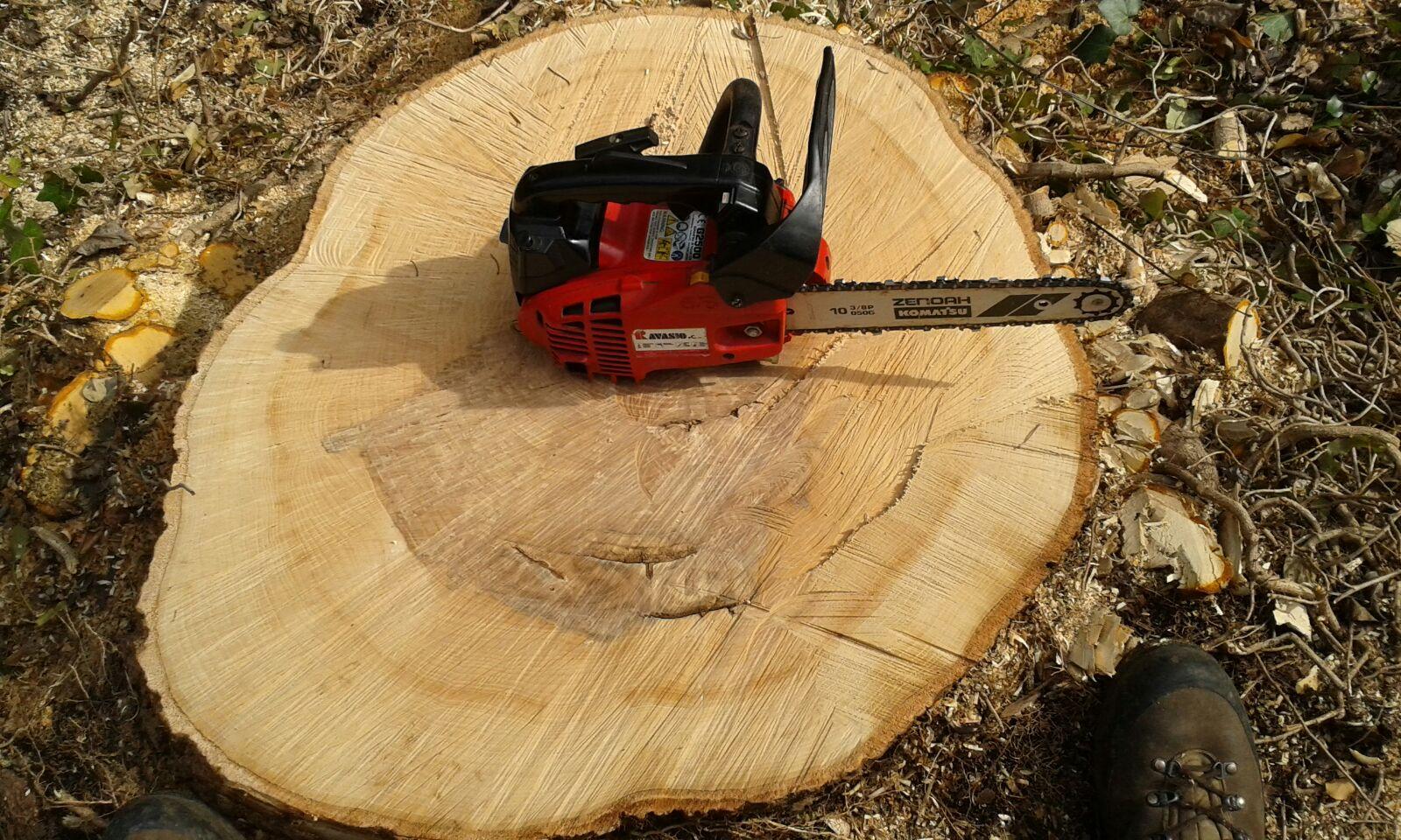 motosega su tronco di legno