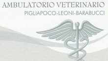 veterinario, clinica veterinaria