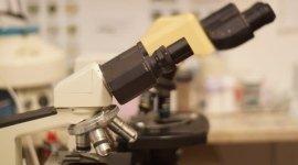 esami al microscopio, esami per animali
