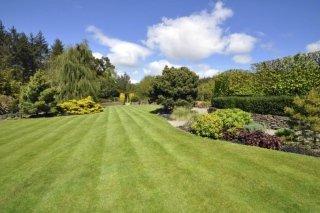 cura del verde, manutenzione giardini