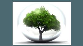 Servizo cura del verde