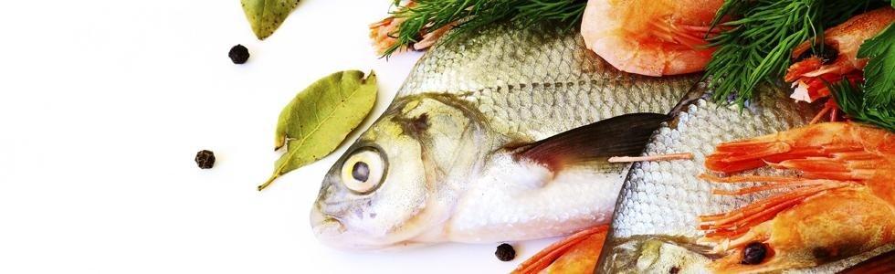 Forniture pesce Carini