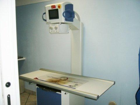 radiologia per animali domestici
