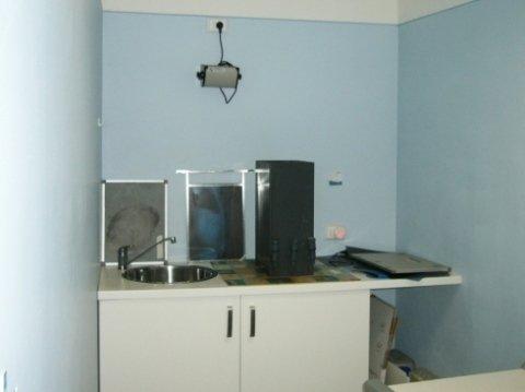 radiografie per animali
