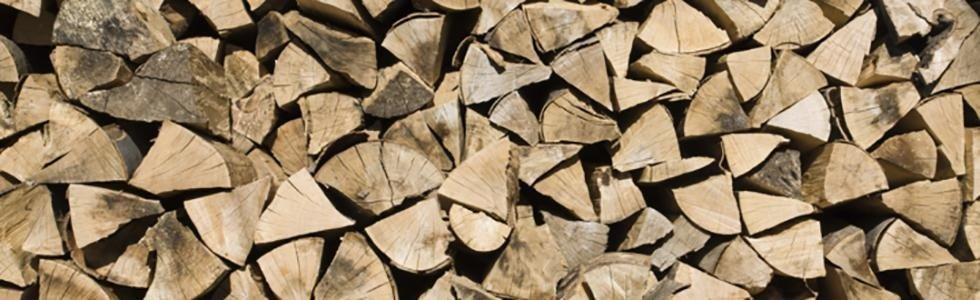 vendita legna al dettaglio