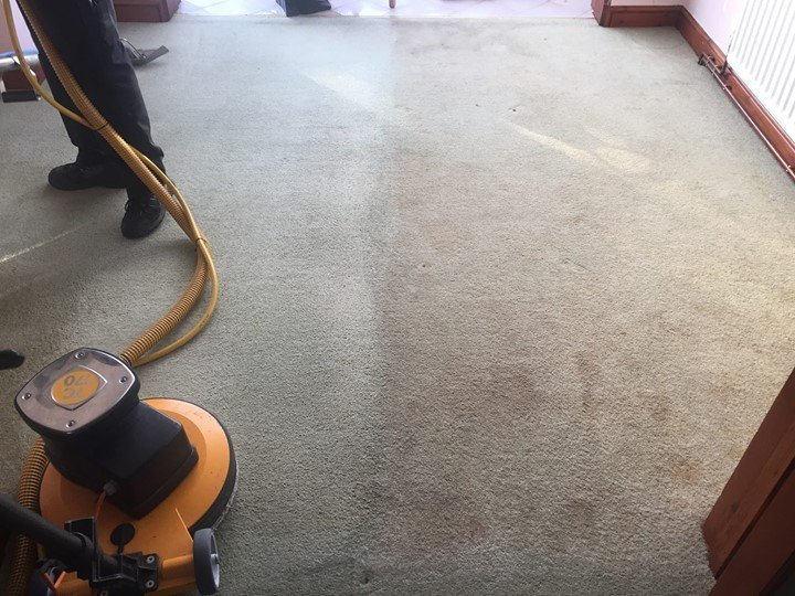carpet dust removal