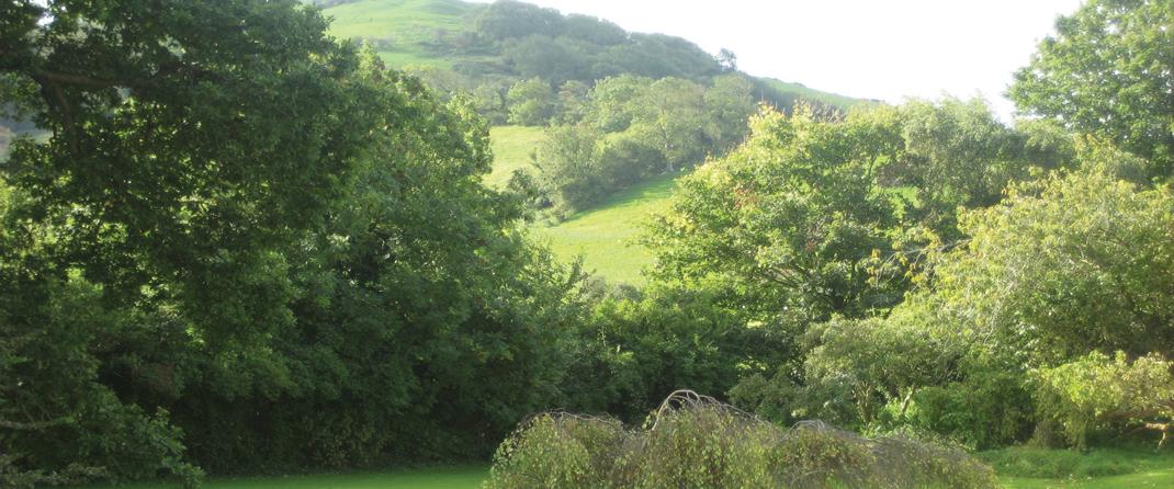 Rossholme East Brent Somerset