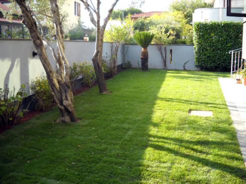 Il vostro giardino necessita di una tosatura? Contattate la ditta. Si effettuano lavori impeccabili.