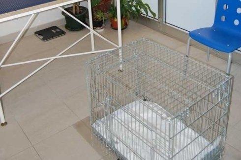 gabbia per animali