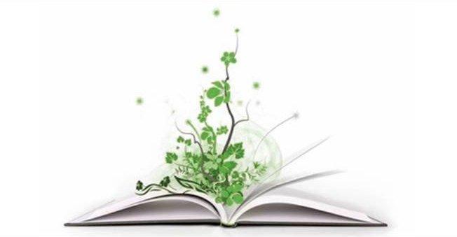 caricatura di un libro aperto con pianta che cresce