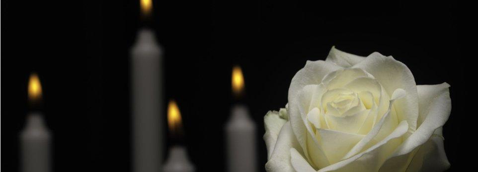 rosa bianca e lumi accesi
