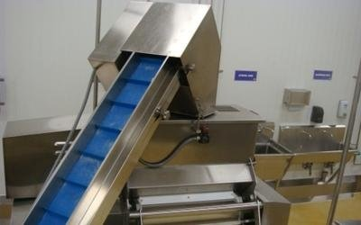 producción pasta banda continua