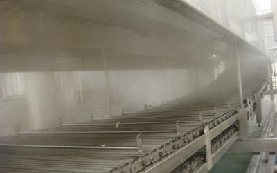 Industrial pasta production