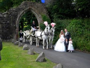 Horse drawn carriage - UK, United Kingdom, England - North East Carriage Co Ltd - carriage