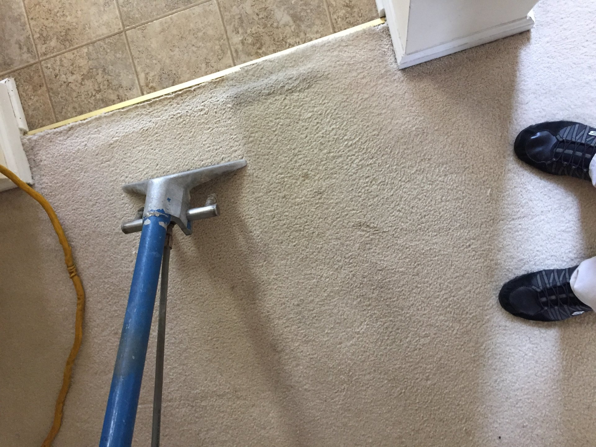 Carpet Cleaning Services NJ