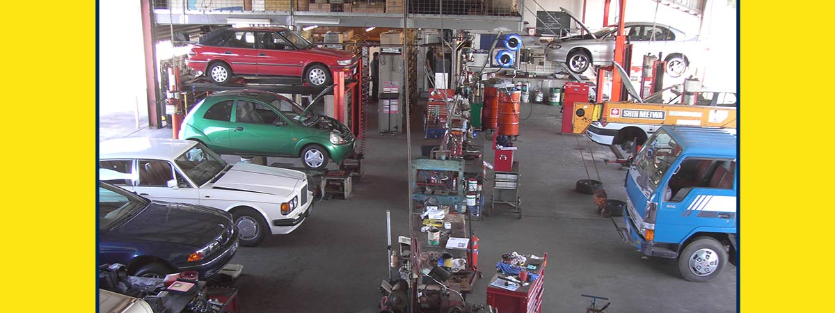 suncoast automotive servics cars in shed