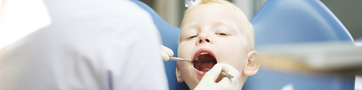 alstonville family dental dentist checks kids teeth