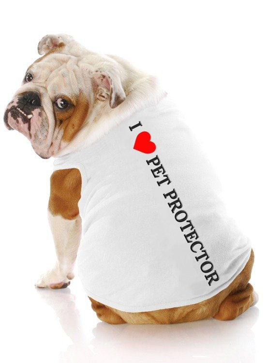 Love your pet and give the gift of Pet Protector