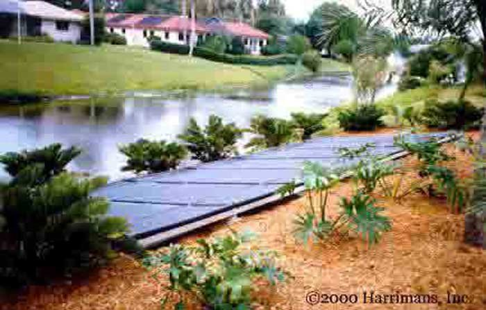 solar panels on the side of river