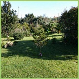 parchi-e-aree-verdi