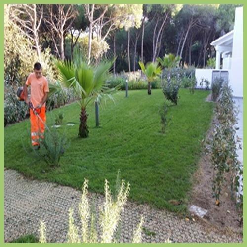 Progettazione, Realizzazione, Manutenzione di giardini e prati