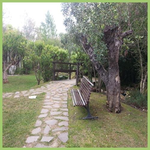 Realizzazione parchi e aree verdi