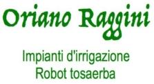 RAGGINI IRRIGAZIONI E ROBOT TOSAERBA - LOGO