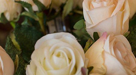 Delle rose di color bianco