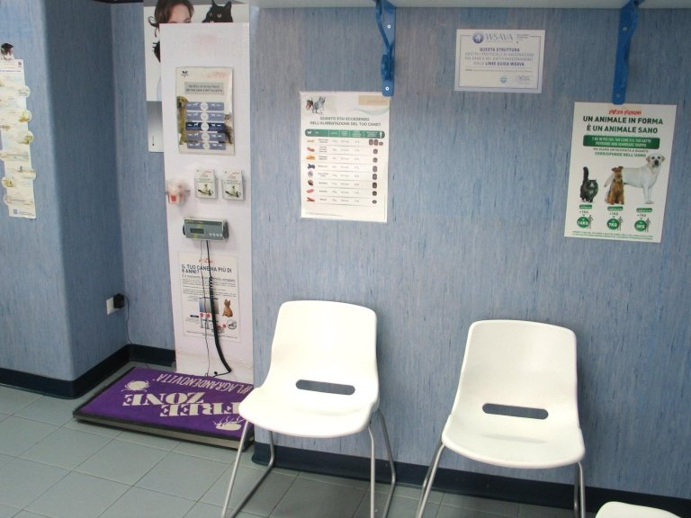 sala attesa veterinaria