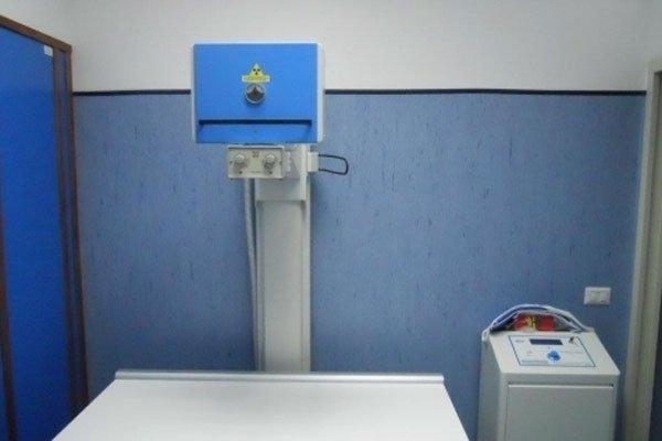 radiografia per animali