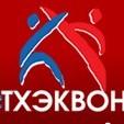 Федерация тхэквондо (паратхэквондо) инвалидов Свердловской области