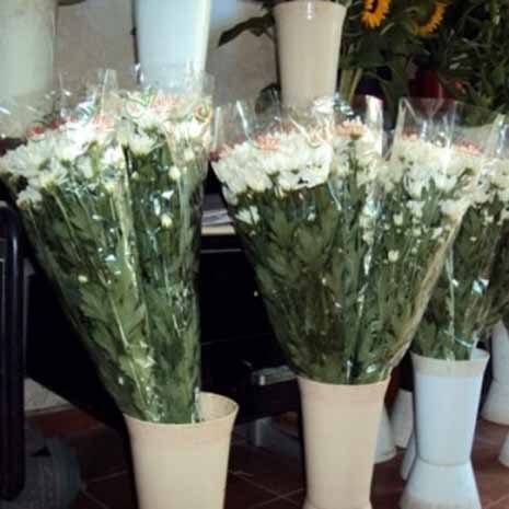 mazzi di fiori in vasi