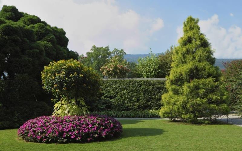 Manutenzione del verde Mc Gardens