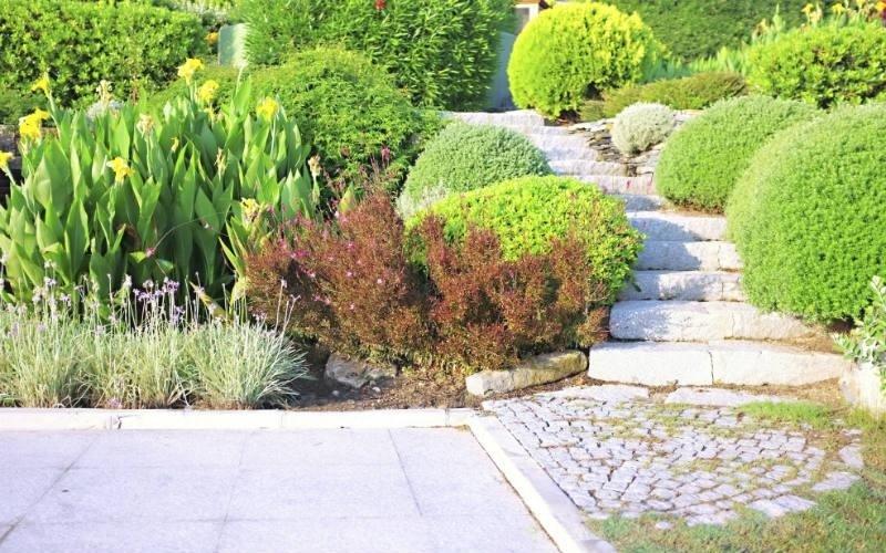 Creazione spazi verdi Mc Gardens
