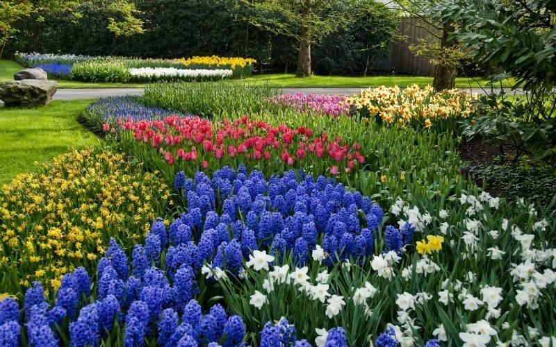 Creazione giardini Mc Gardens