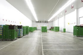Cool Room Cleaning, Cold Store Cleaning, Pressure Cleaning, High Pressure Cleaning, Pressure Washing