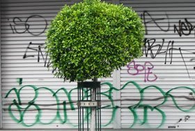 SPECIALISED INDUSTRIAL CLEANING SERVICES: Graffiti Removal Using Industrial Cleaning Methods