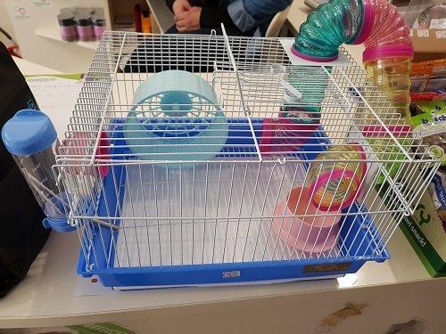 una gabbia per topi