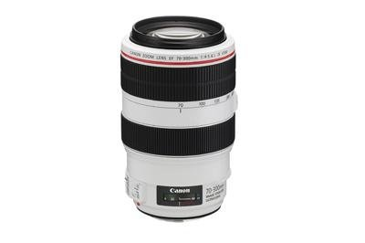 Canon 70-300L is usm