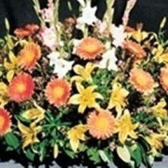 composizione cerimonie funebri