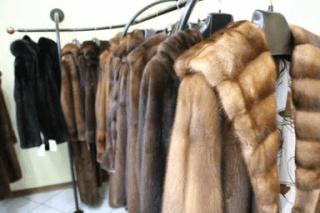Laboratorio di pellicceria