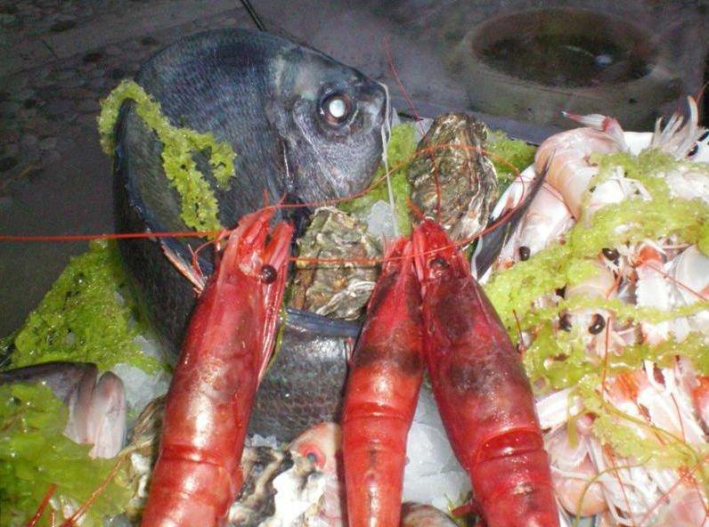 dei gamberi rossi e altro pesce