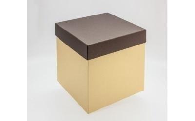 scatola bicolore