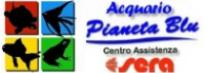 http://www.acquarifirenze.info/