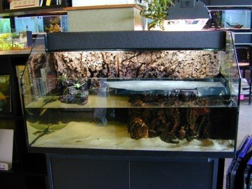 La vasca per il mantenimento delle tartarughine, dotata di filtro, riscaldamento e illuminazione a raggi UV-B